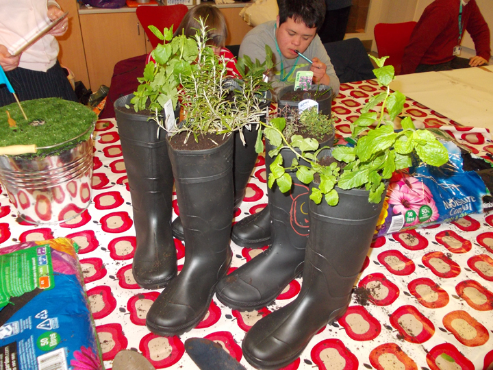 Wellie Boot Herb Garden